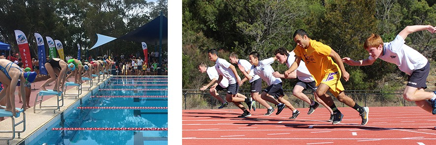 Students on the block ready to dive at the swimming carnival and students running on the track at the Athletics carnival